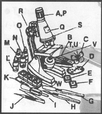 اجزای میکروسکوپ